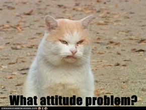What attitude problem?
