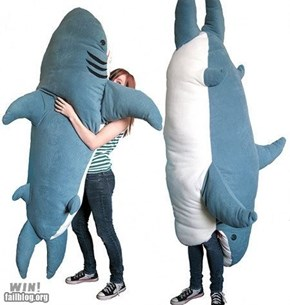 WIN!: Shark Pillow WIN