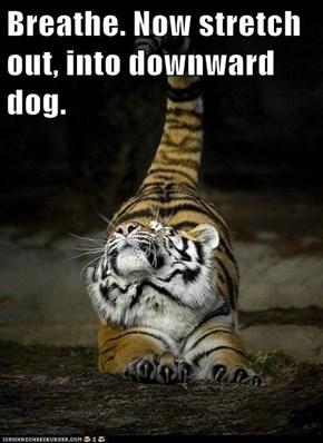 Yoga Tiger