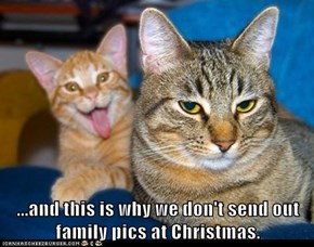 Lolcats: ... And This Is Why