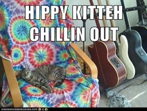 HIPPY KITTEH CHILLIN OUT