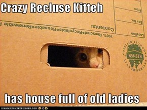 Lolcats: Classic Lolcat