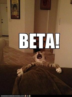 BETA!
