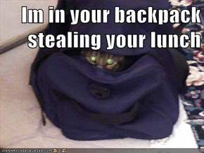 Im in your backpack stealing your lunch
