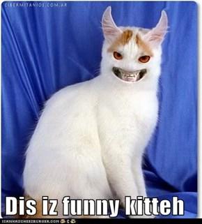 Dis iz funny kitteh