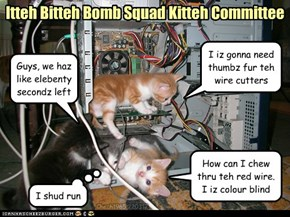 Itteh Bitteh Bomb Squad Kitteh Committee