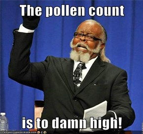 The pollen count  is to damn high!