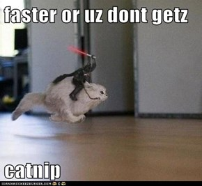 faster or uz dont getz   catnip
