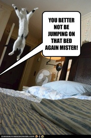 YOU BETTER NOT BE JUMPING ON THAT BED AGAIN MISTER!