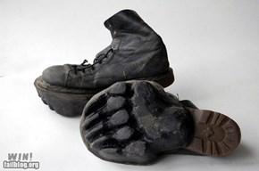 Footprint Shoes WIN