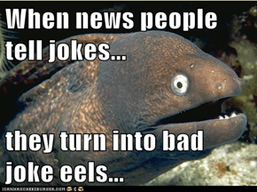When news people tell jokes...  they turn into bad joke eels...
