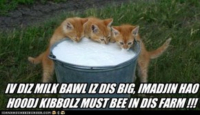 IV DIZ MILK BAWL IZ DIS BIG, IMADJIN HAO HOODJ KIBBOLZ MUST BEE IN DIS FARM !!!