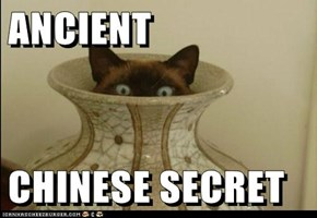 ANCIENT  CHINESE SECRET
