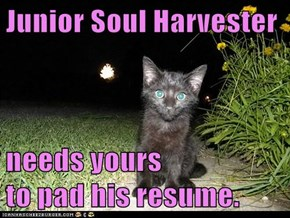 Junior Soul Harvester  needs yours                             to pad his resume.