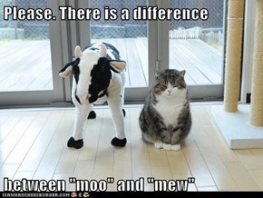 "Please. There is a difference   between ""moo"" and ""mew"""