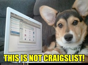 THIS IS NOT CRAIGSLIST!