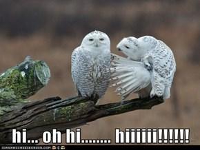 hi... oh hi........ hiiiiii!!!!!!