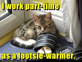 I work part-time  as a footsie-warmer.