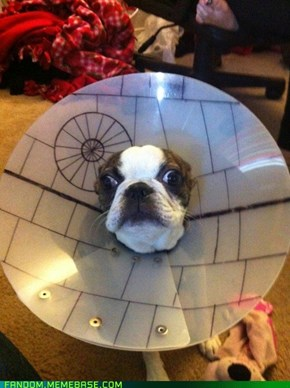 That's No Death Star!