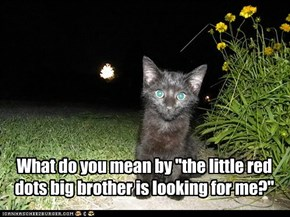"What do you mean by ""the little red dots big brother is looking for me?"""