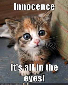 Innocence  It's all in the eyes!