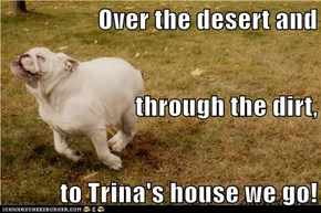 Over the desert and through the dirt, to Trina's house we go!