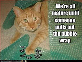 Lolcats: We're All Mature