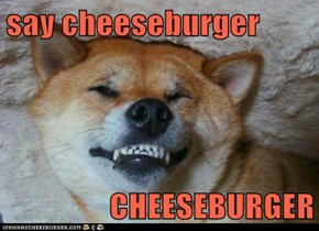 say cheeseburger  CHEESEBURGER