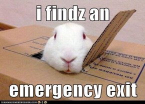 i findz an  emergency exit