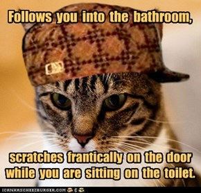 Scumbag Cat: I Didn't Know You Were Going to Do That