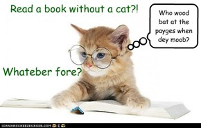 A Book without a Cat is...well...just silly!