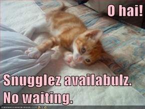 O hai!                               Snugglez availabulz.  No waiting.