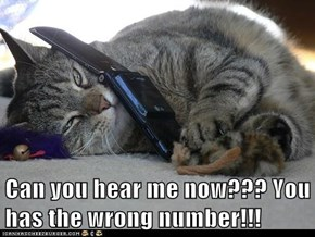 Can you hear me now??? You has the wrong number!!!