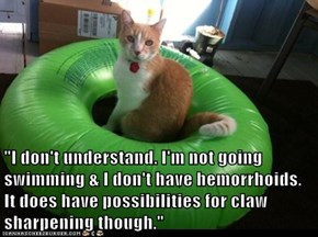"""I don't understand. I'm not going swimming & I don't have hemorrhoids. It does have possibilities for claw sharpening though."""