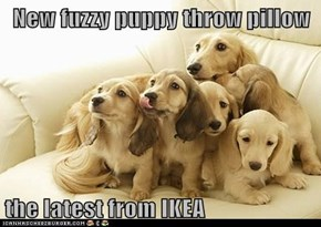 New fuzzy puppy throw pillow  the latest from IKEA