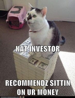 KAT INVESTOR RECOMMENDZ SITTIN ON UR MONEY