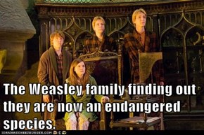 The Weasley family finding out they are now an endangered species.