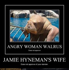 JAMIE HYNEMAN'S WIFE