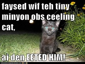 faysed wif teh tiny minyon obs ceeling cat,  ai den EETED HIM!