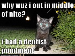 why wuz i out in middle of nite?  i had a dentist pointment