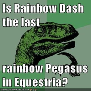 Is Rainbow Dash the last  rainbow Pegasus in Equestria?
