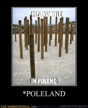 *POLELAND