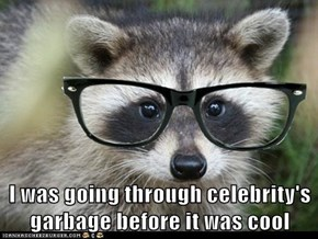 Animal Capshunz: Hipster Raccoon