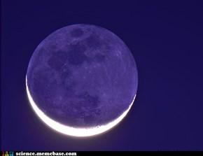 Old Moon, New Moon.