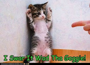 I Swar It Wad Tha Goggie!
