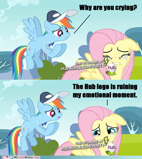 Hub, y u ruin fluttershy's moment?