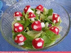 Epicute: Smurf Salad