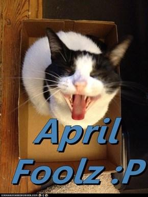 April Foolz :P