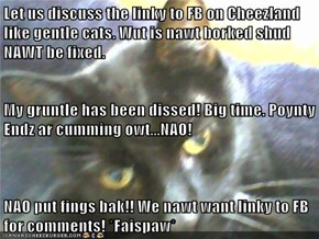 Let us discuss the linky to FB on Cheezland like gentle cats. Wut is nawt borked shud NAWT be fixed. My gruntle has been dissed! Big time. Poynty Endz ar cumming owt...NAO! NAO put fings bak!! We nawt want linky to FB for comments! *Faispaw*