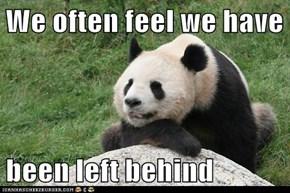 We often feel we have  been left behind